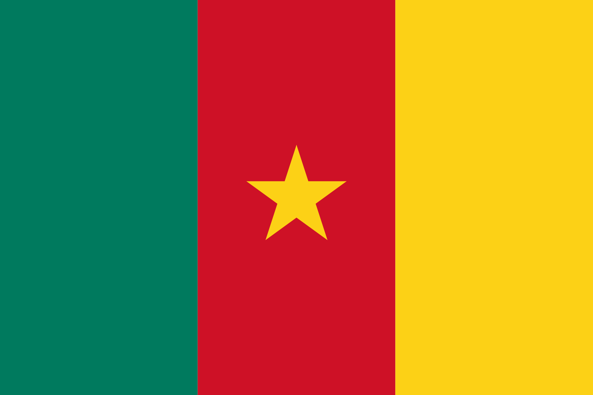 Cameroon Flag Information