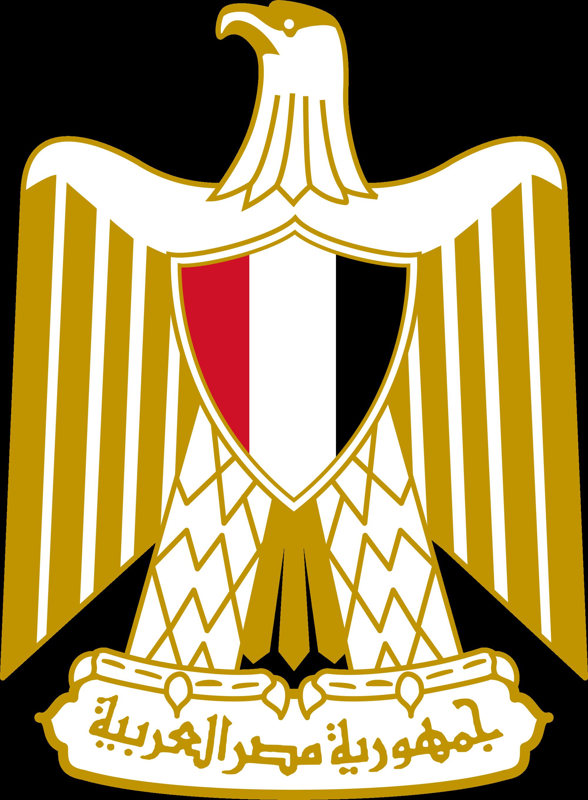 egypt Online Application Form For Egypt Visa on italy schengen, b1 b2, ds-260 immigrant, enter japan sample,